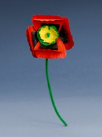 Poppies With Pride craft