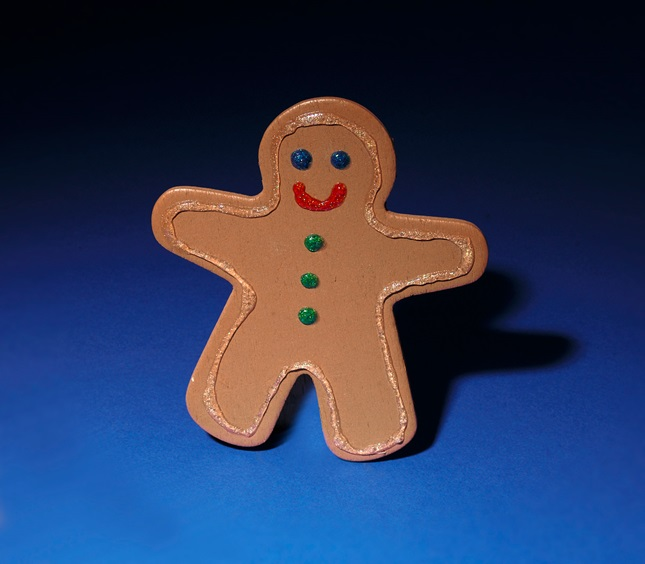 Catch the Gingerbread Magnet! craft