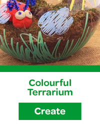 colourful terrarium